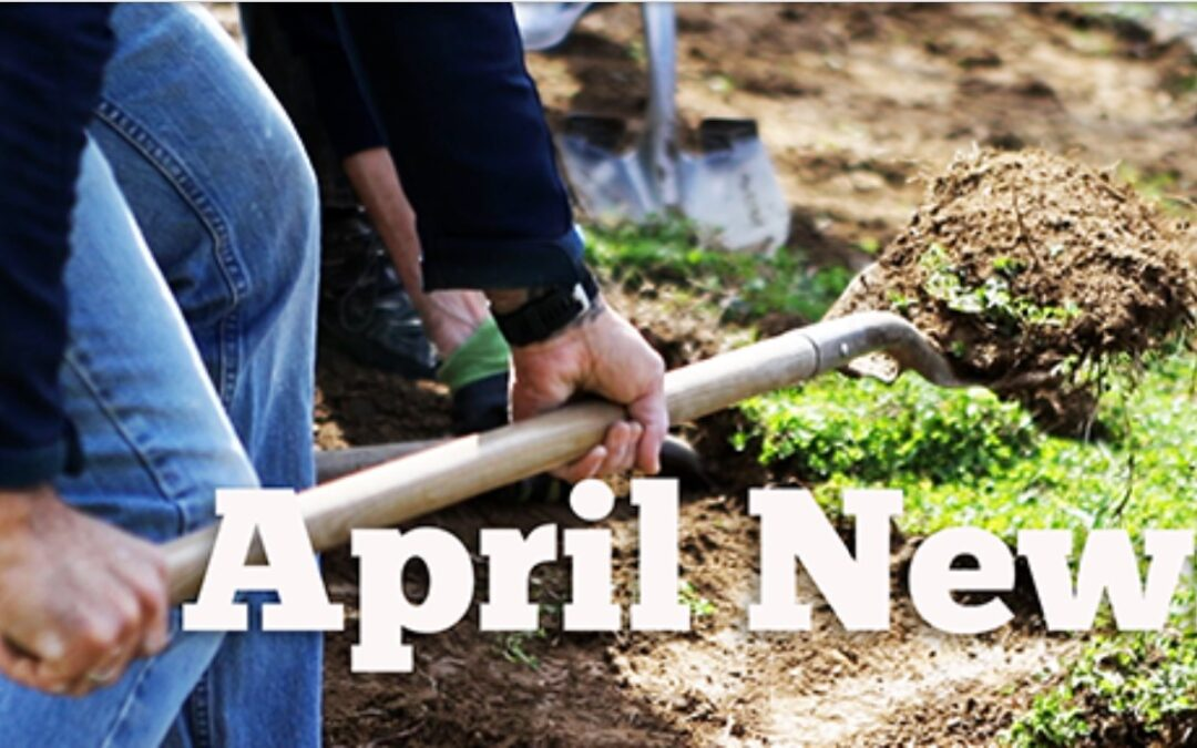 April 2021 TEAC Newsletter